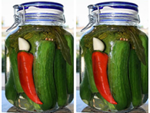 Artisan Champagne Vinegar Refrigerator Dill Pickles