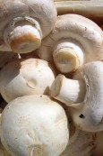House Brand Pickled Mushrooms